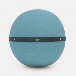 Ballon de Yoga